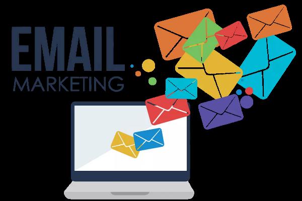 Portais Web   Newsletters